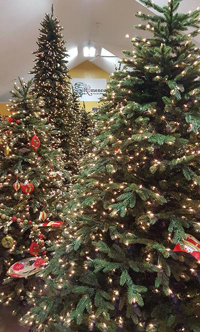 romencechristmastrees2016_400